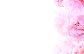 患者さまの声01-旭川のエルム駅前歯科クリスタル-はインプラント,ホワイトニング治療が受けられます。歯医者・歯科医院へのご相談はお気軽に。