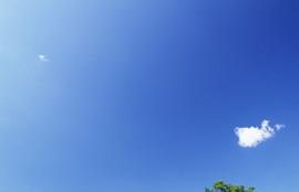 エルム駅前歯科クリスタルbackbgound0038-歯科医院-歯医者-旭川-インプラント-ホワイトニング